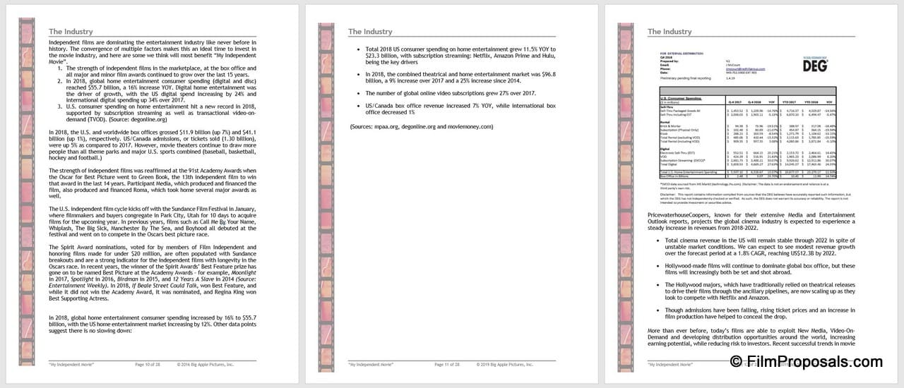 Film Business Plan Template Screenshots