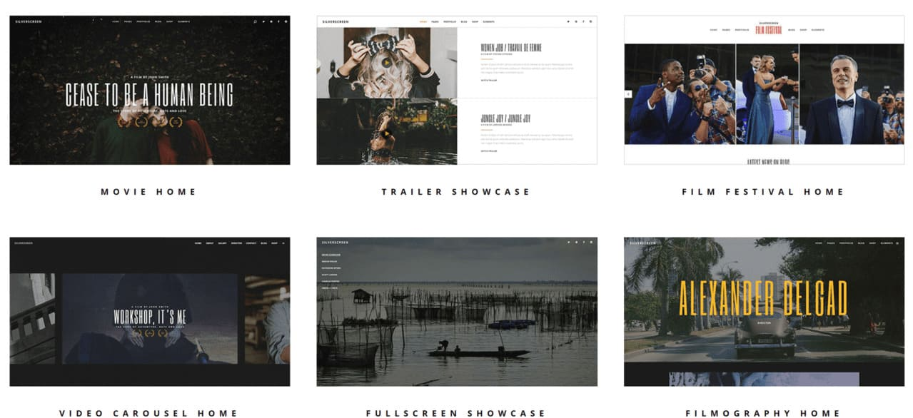 Build a Filmmaker Website